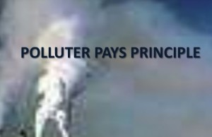 polluter-pays-principle-image